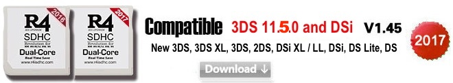 Set Up R4 SDHC Dual Core, Kernel Installation & Firmware ...