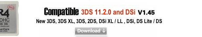 r4 3ds dual core 2013 firmware